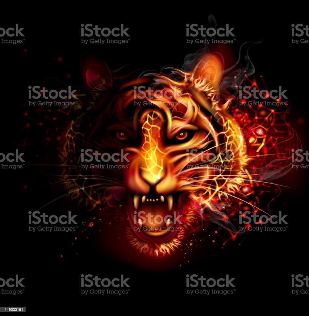 Fire Tiger vector art illustration