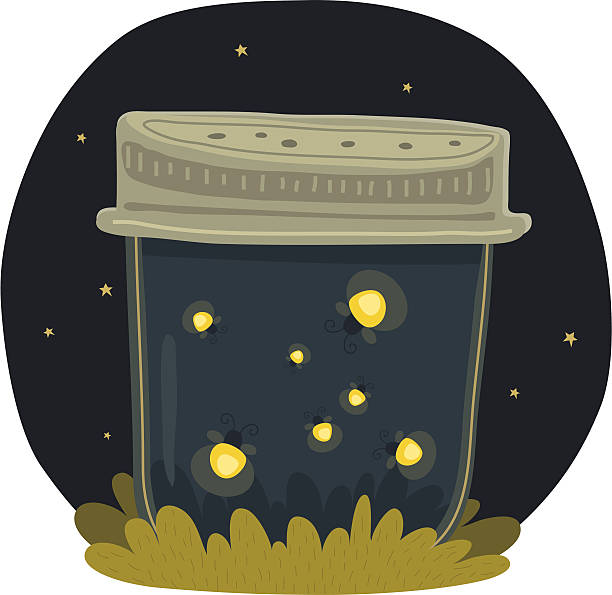 Firefly Clip Art, Vector Images & Illustrations - iStock