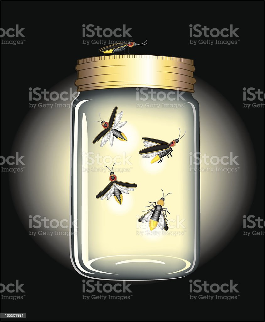 FireFlies in a Jar royalty-free stock vector art