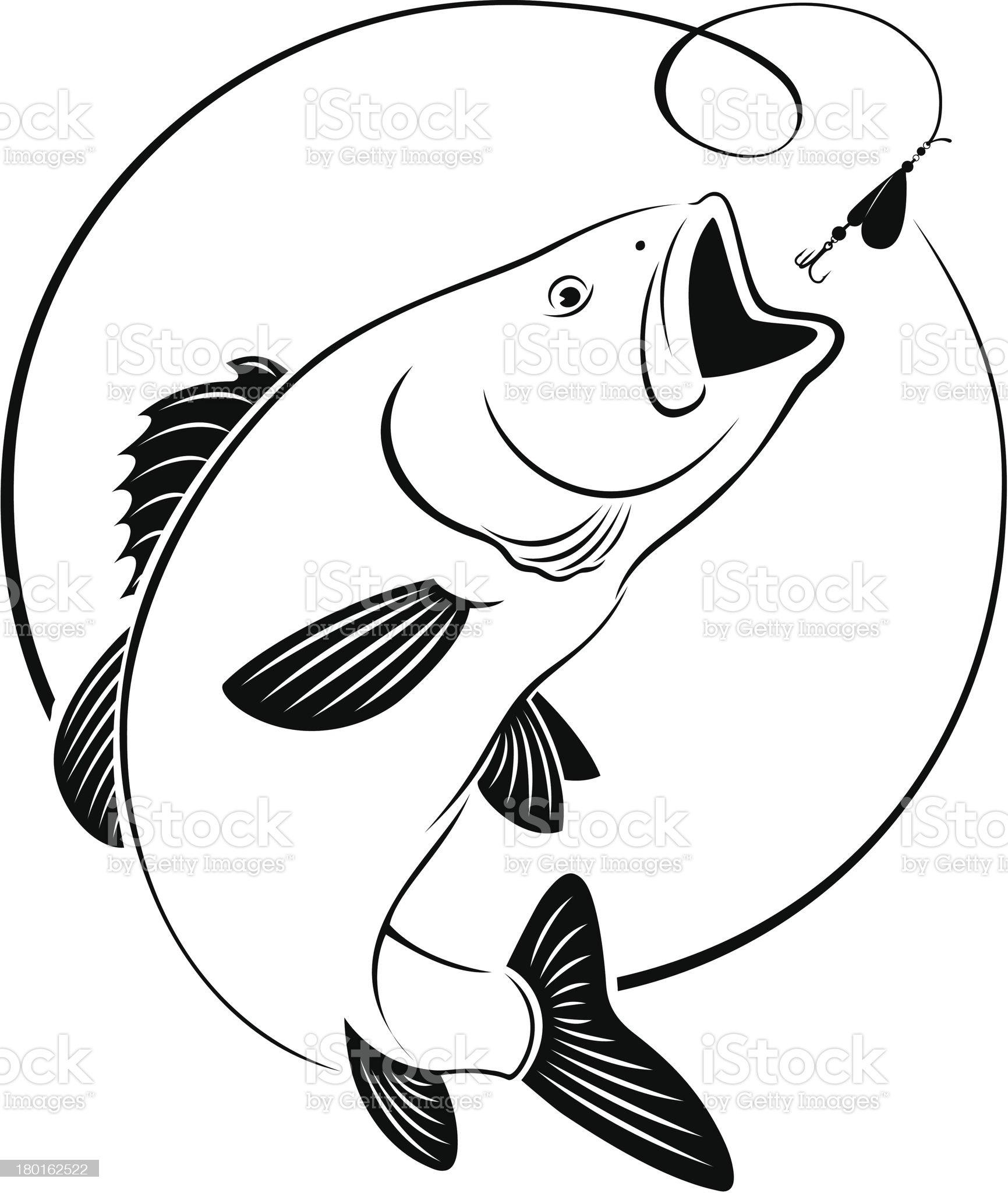 fish bass royalty-free stock vector art
