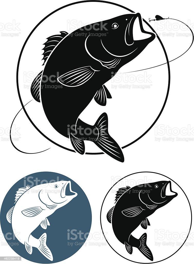 fish bass vector art illustration