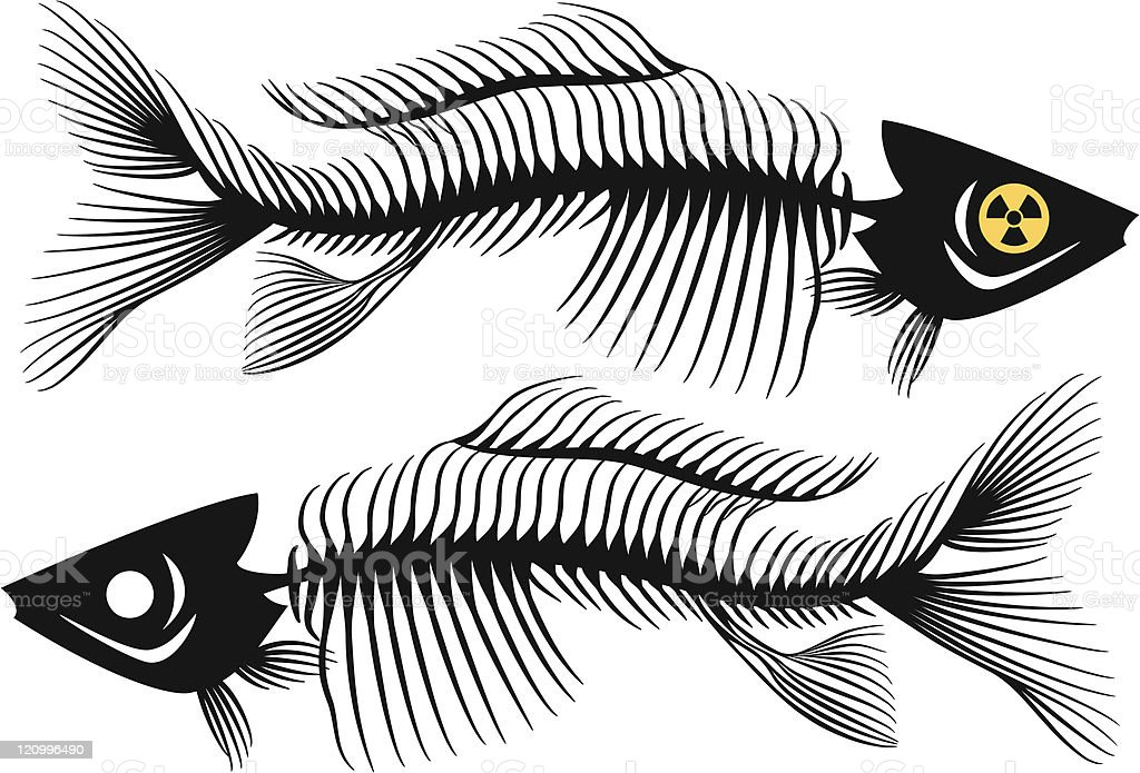 fish bones royalty-free stock vector art