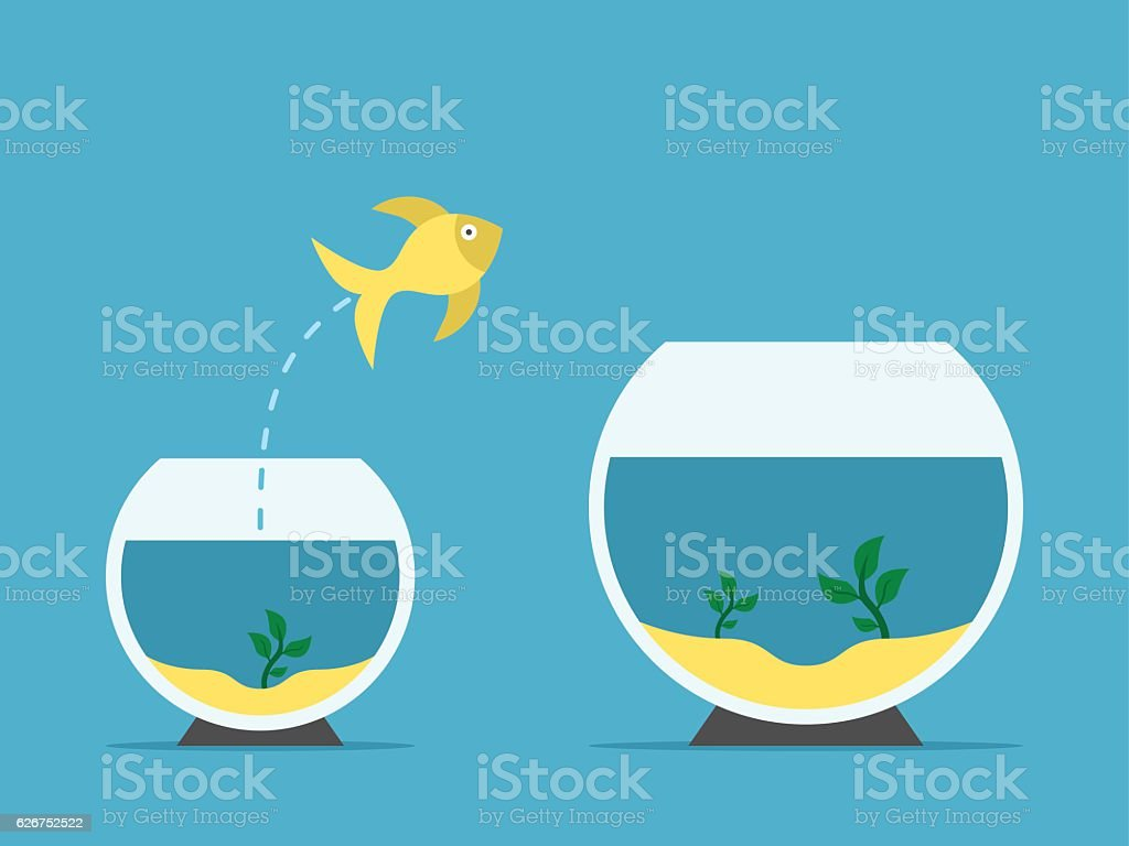 Fish changing aquarium vector art illustration