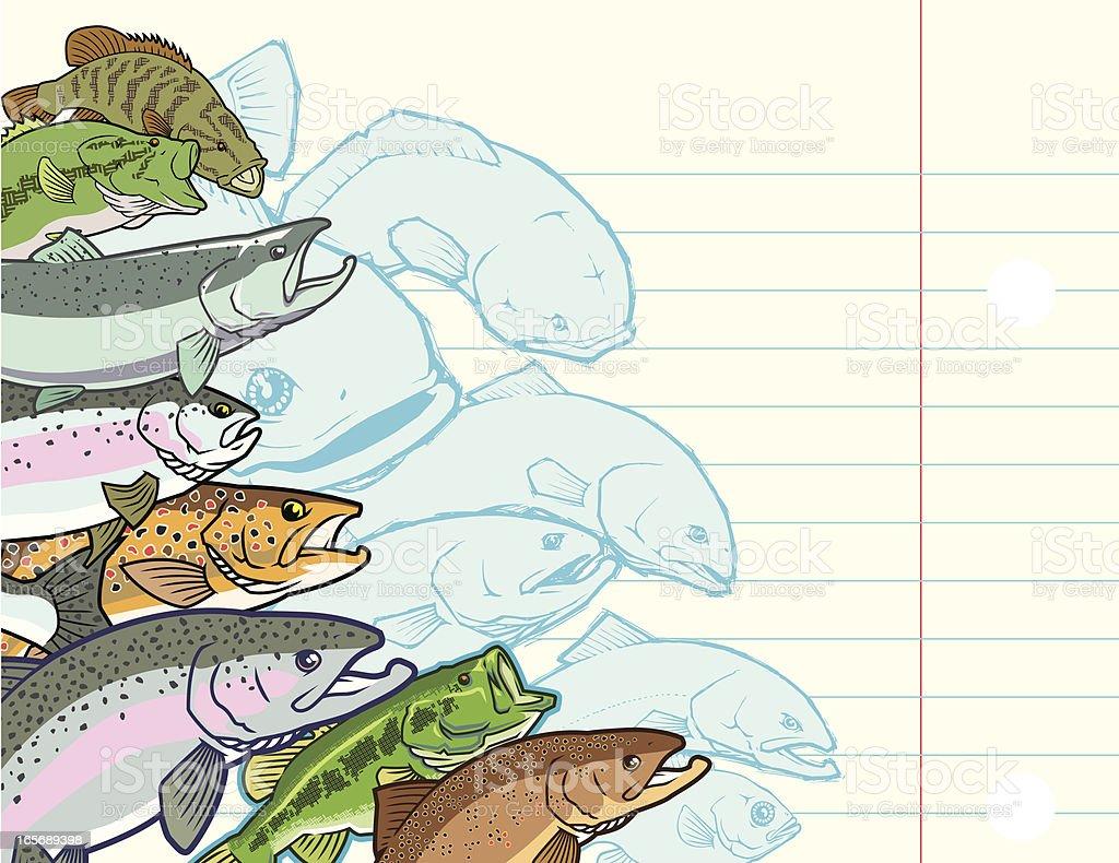 Fish Collage vector art illustration