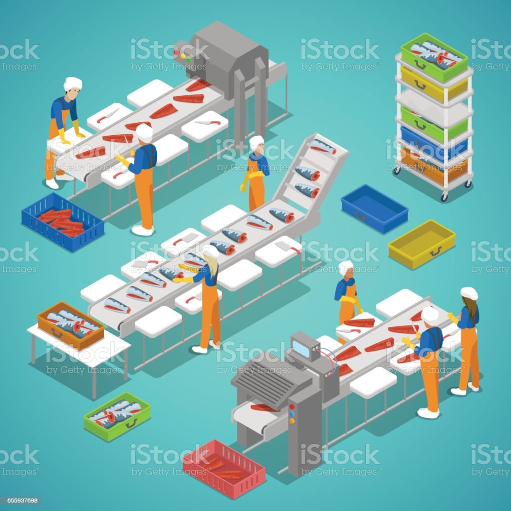 Fish Farming Industry with Conveyor and Workers. Vector isometric illustration vector art illustration