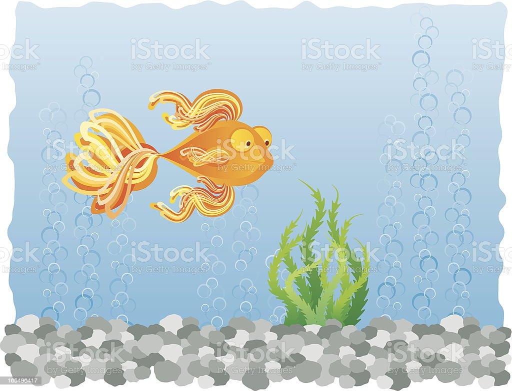 Fish in Tank vector art illustration
