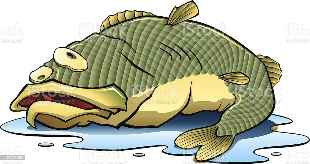Fish Out of Water vector art illustration