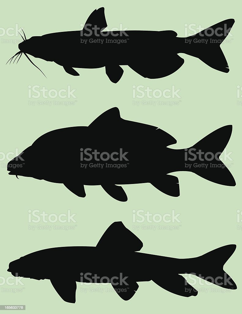Fish Silhouette: Bottom feeders royalty-free stock vector art