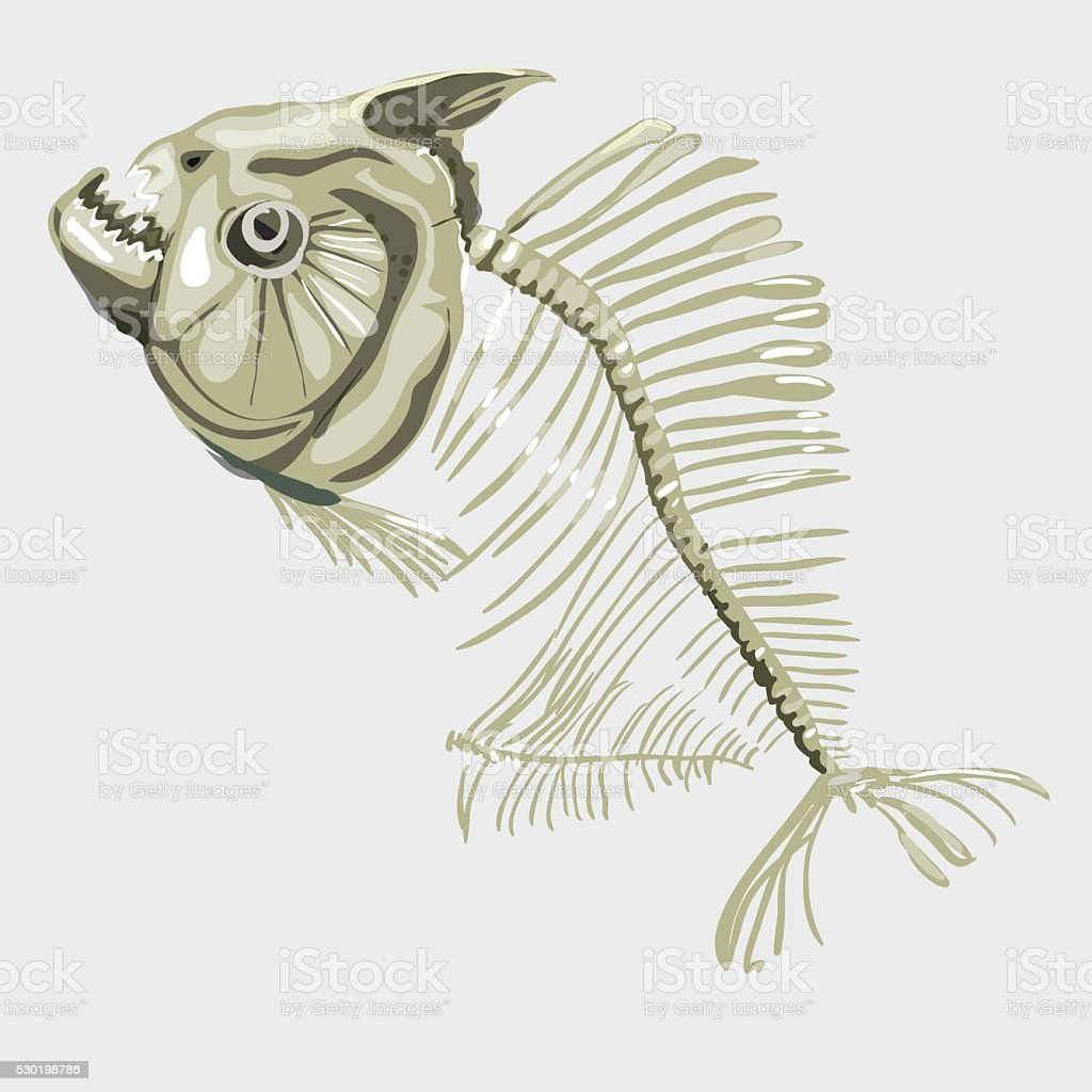 Fish skeleton, icon for other design needs vector art illustration