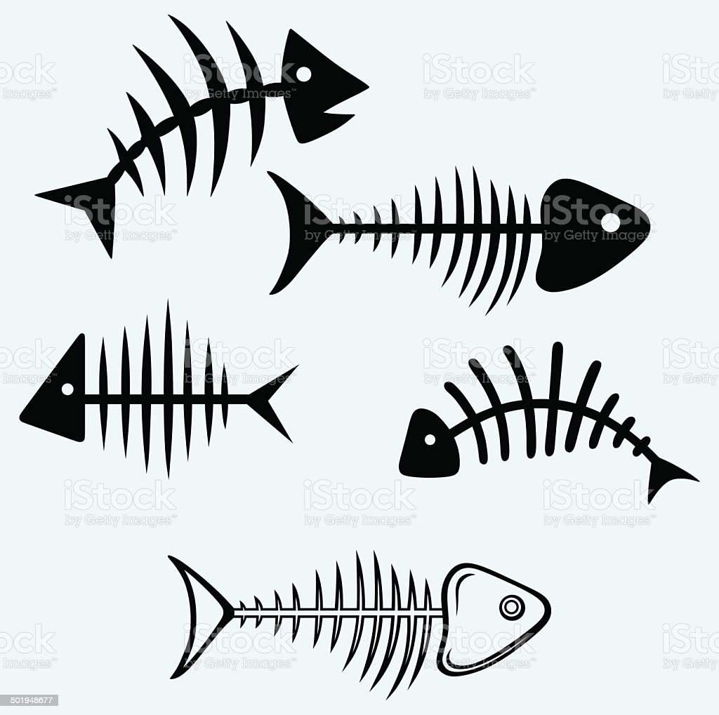 Fish skeleton vector art illustration