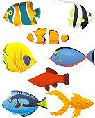 Fish Underwater Sea Life