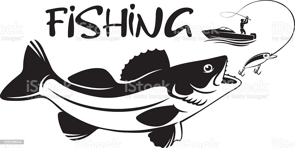 fish walleye vector art illustration