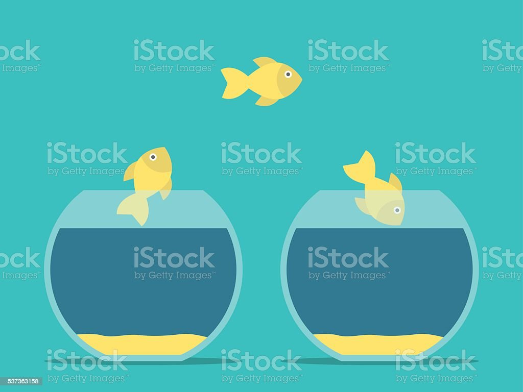 Fishes moving between aquariums vector art illustration