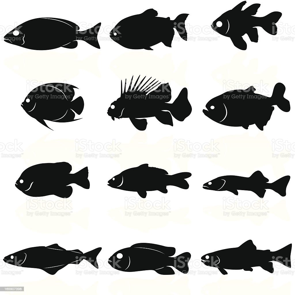 Fishes Silhouettes vector art illustration