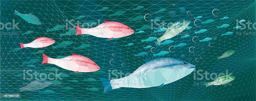 fishing colorful fishes vector art illustration