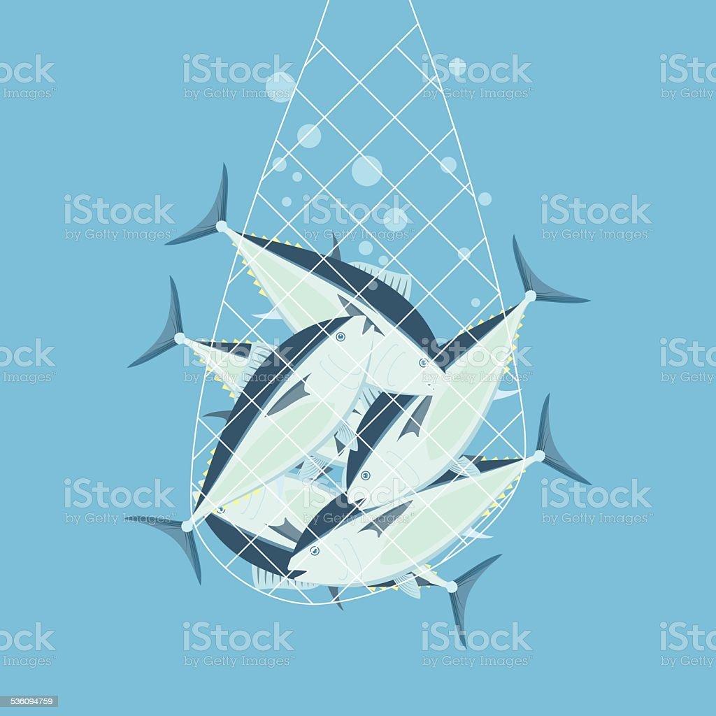 Fishing nets bluefin tuna vector art illustration