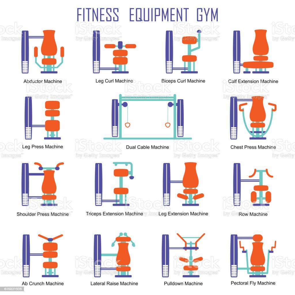 Fitness equipment color vector art illustration