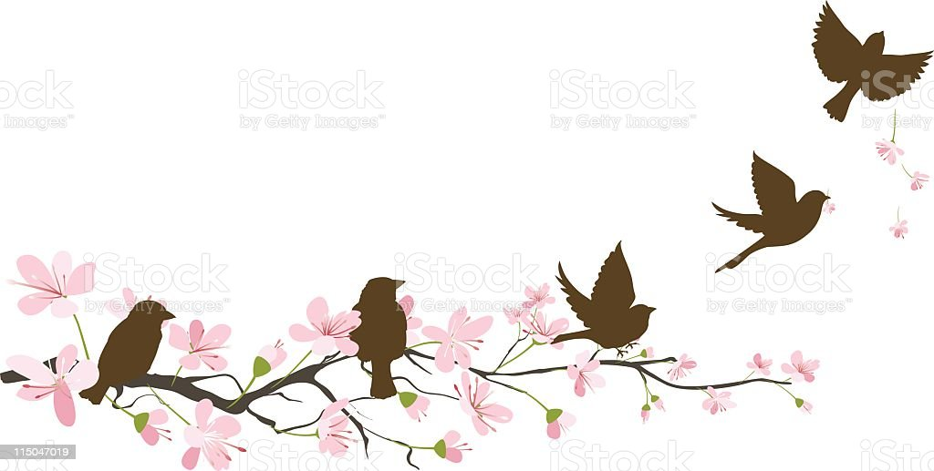 Five Brown Sparrow Silhouettes and Cherry Blossoms Branch royalty-free stock vector art