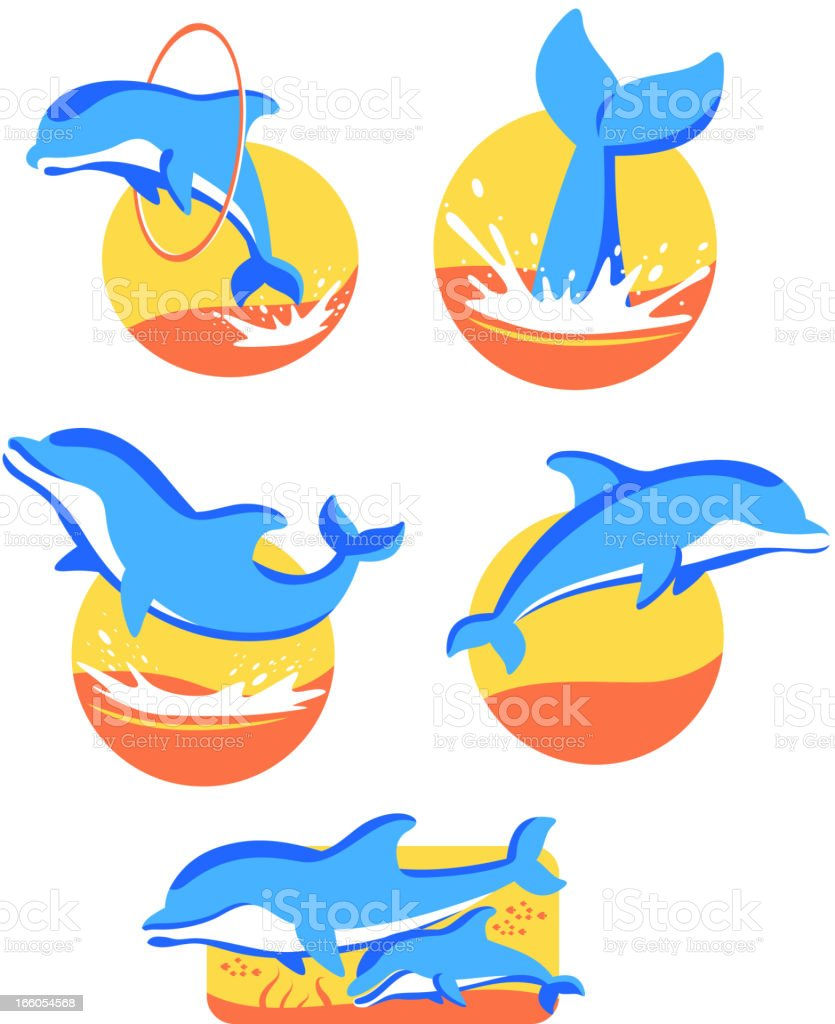 Five Dolphin icons set vector art illustration