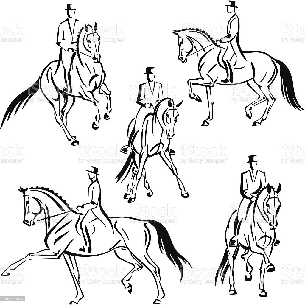 Five dressage riders vector art illustration