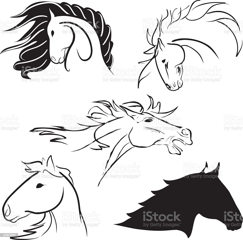 Five stylized Horse Heads in pen & Ink style drawings royalty-free stock vector art