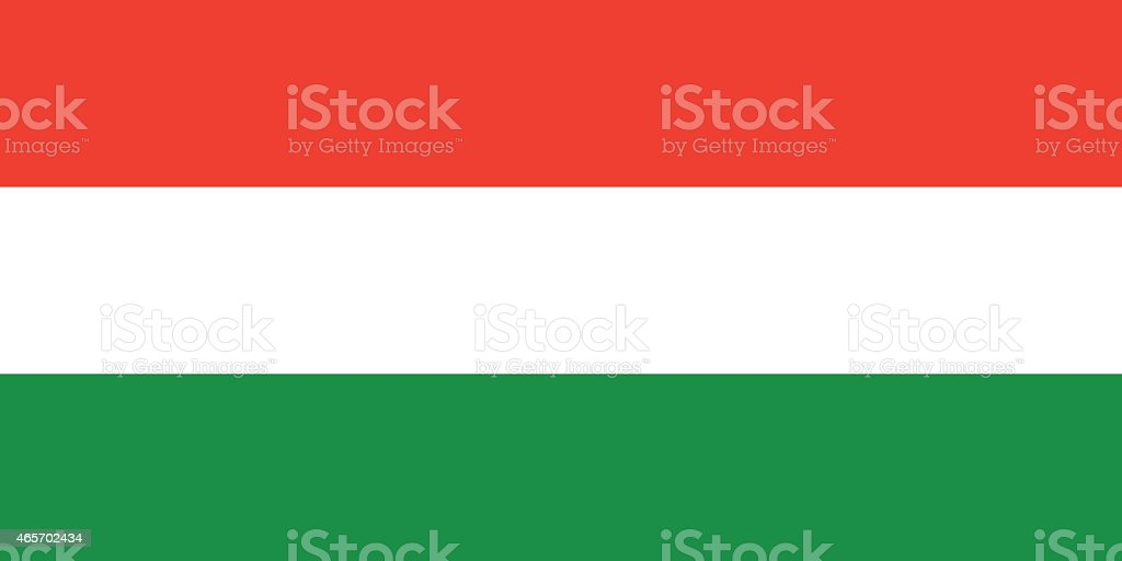 Flag Hungary vector art illustration