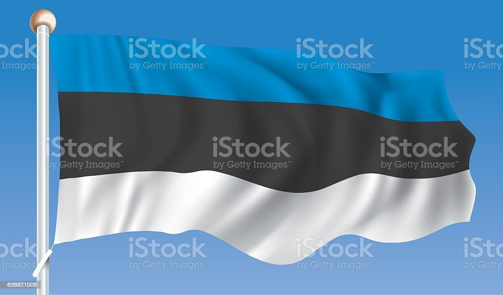 Flag of Estonia vector art illustration