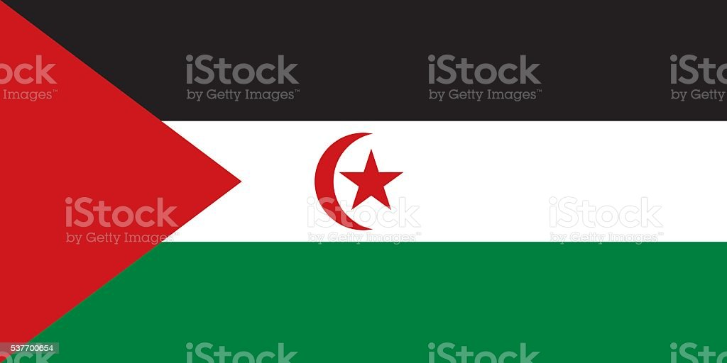 Flag Sahrawi Arab Democratic Republic vector art illustration