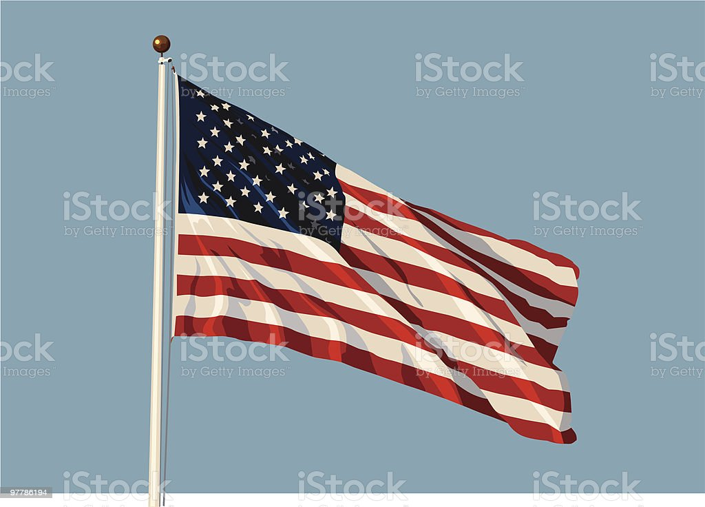 Flag US vector vector art illustration