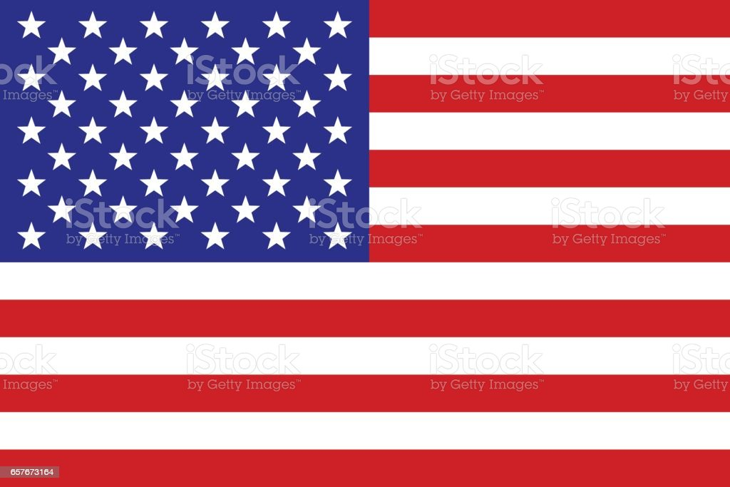 US Flag vector art illustration