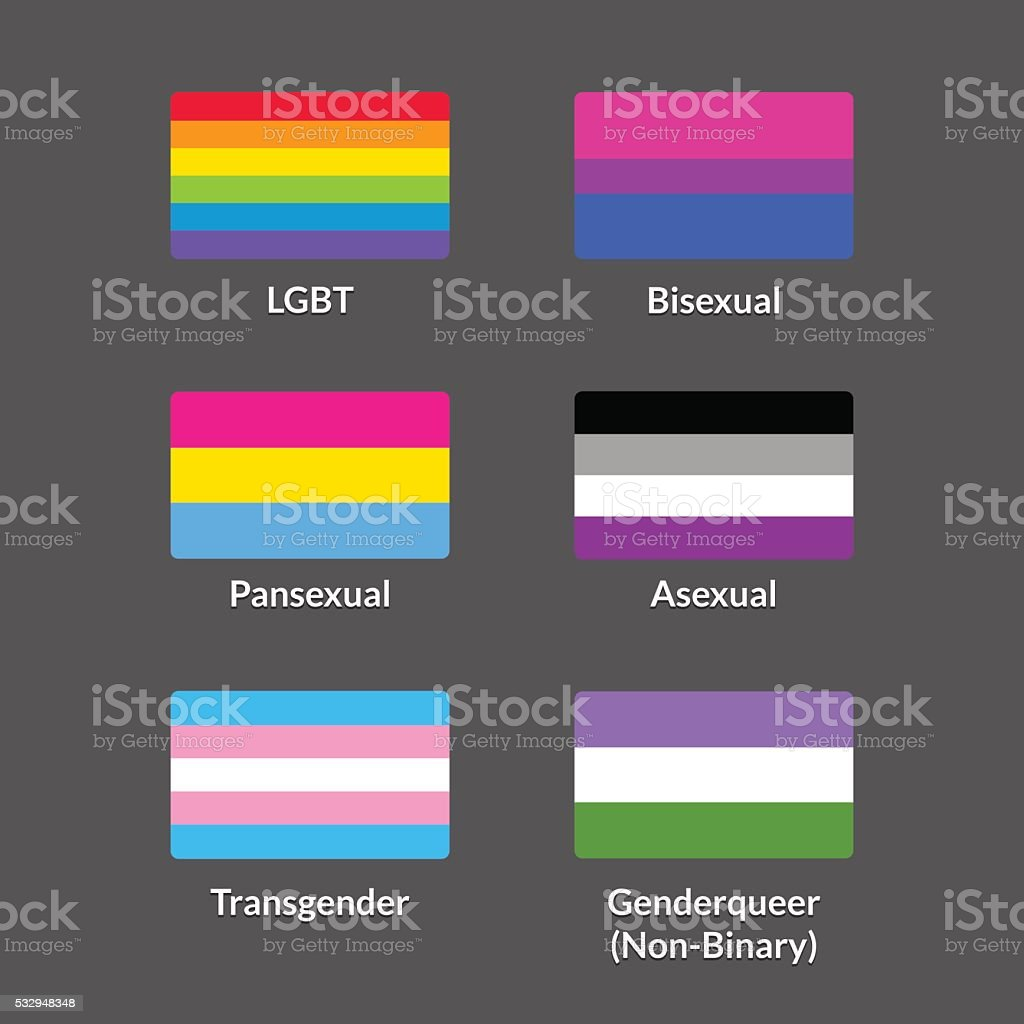 LGBT flags set vector art illustration