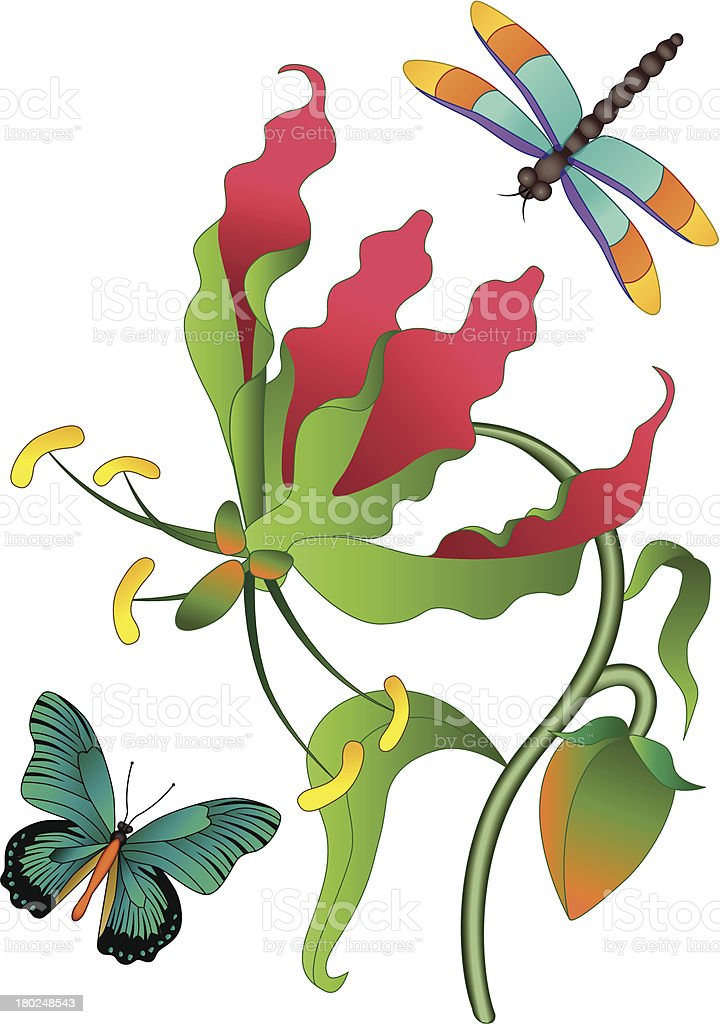 flame lily dragonfly and butterfly royalty-free stock vector art
