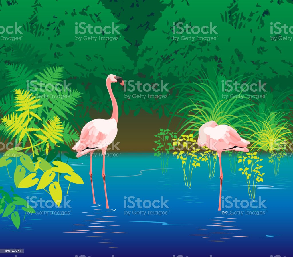 Flamingo Lagoon royalty-free stock vector art