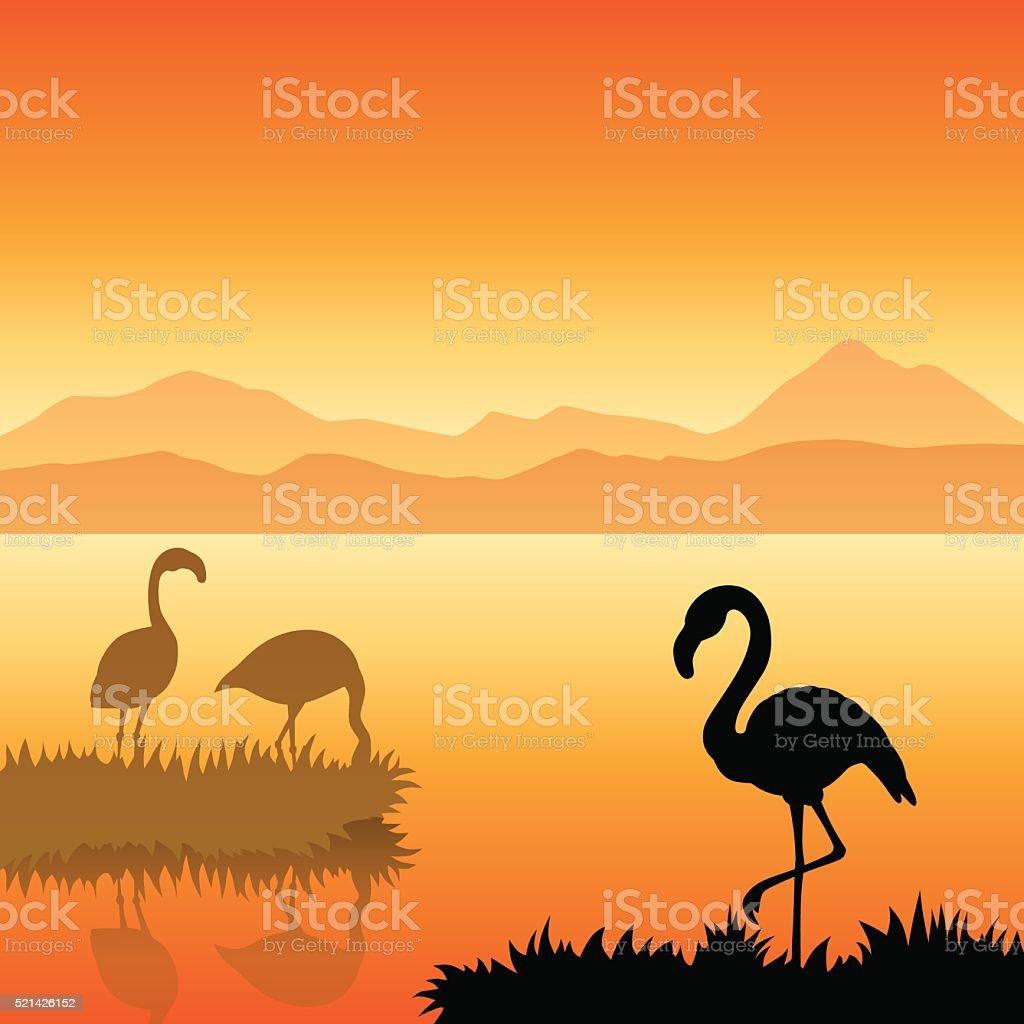 Flamingo silhouette landscape nature sunset sunrise illustration vector vector art illustration