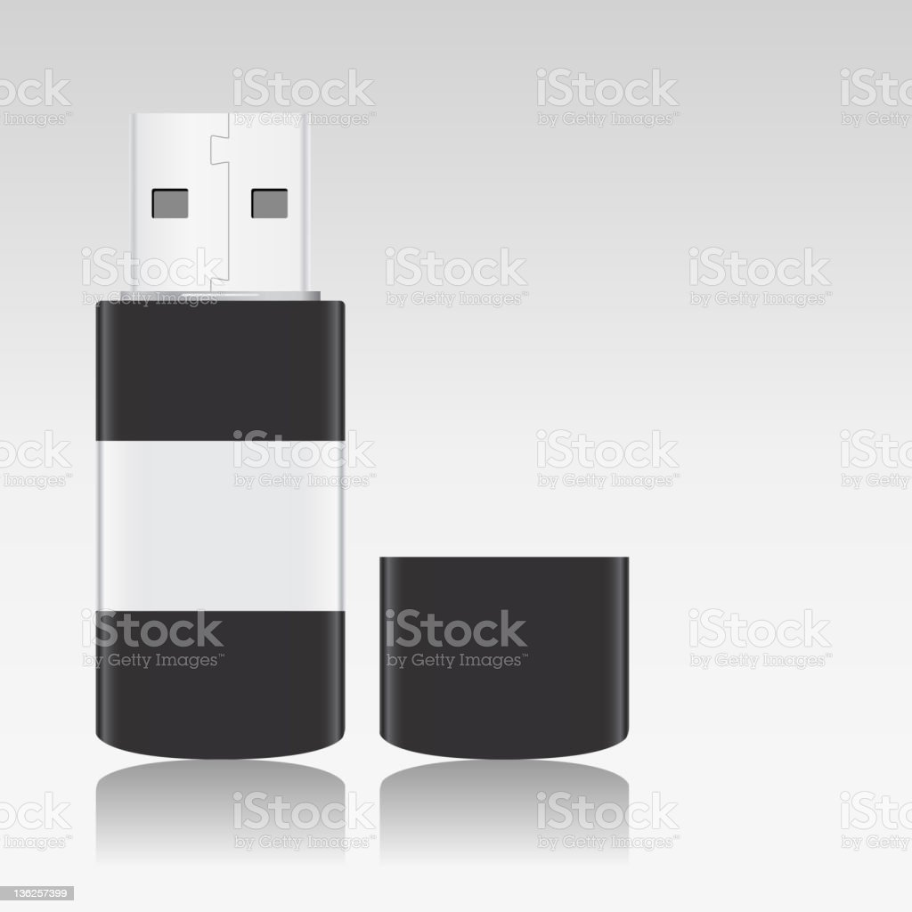 USB Flash Drive royalty-free stock vector art