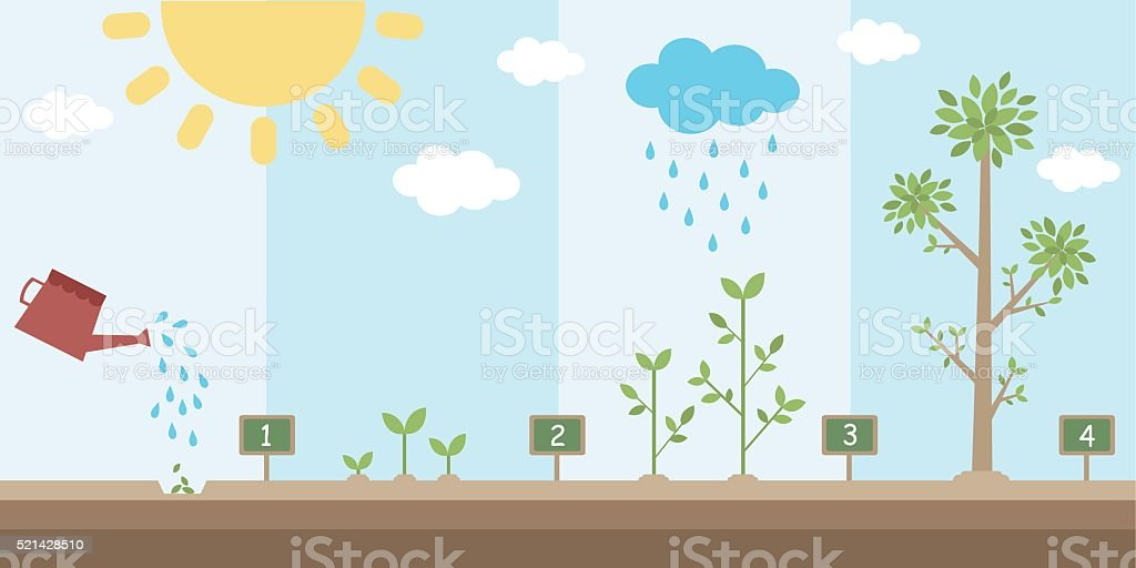 flat background of planting tree process vector art illustration