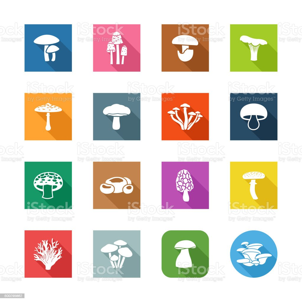 Flat Icons - Edible Mushrooms vector art illustration