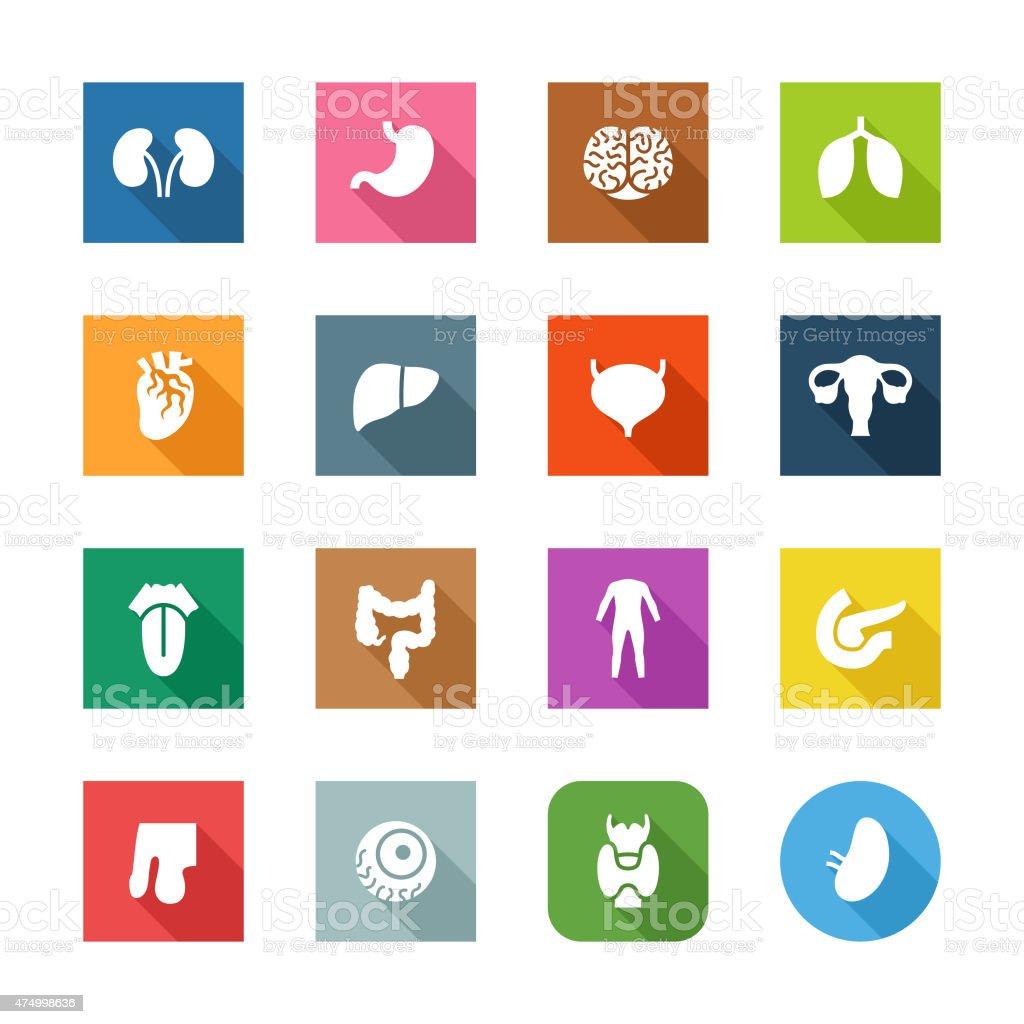Flat Icons - Human Organs vector art illustration