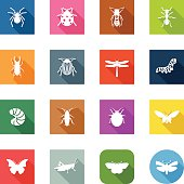 Flat Icons - Insects