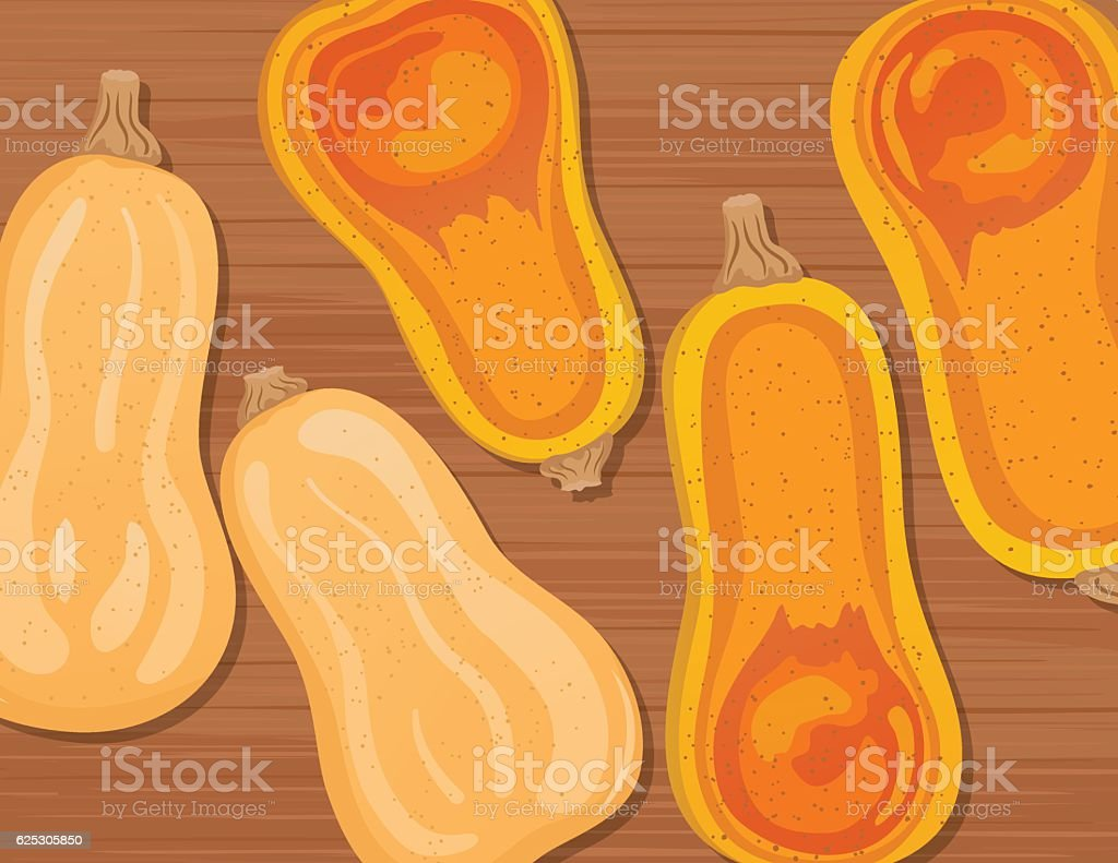 Flat lay of Raw And Cooked Butternut Squash vector art illustration