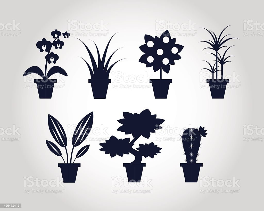 Flat style Houseplants vector art illustration