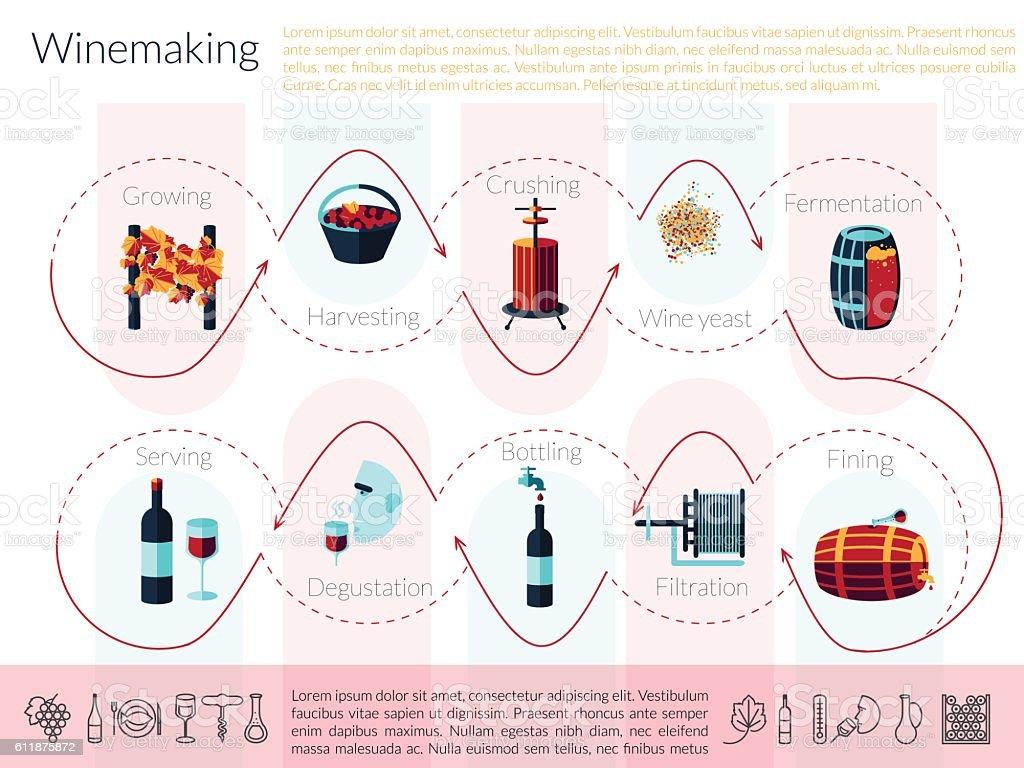 flat winemaking infographic vector art illustration