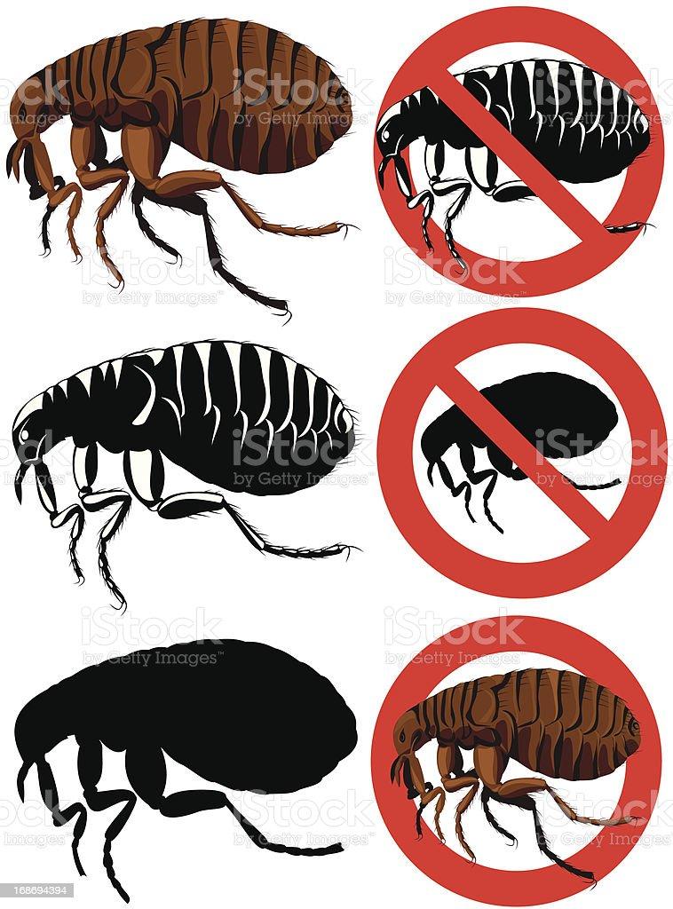 flea - warning signs vector art illustration