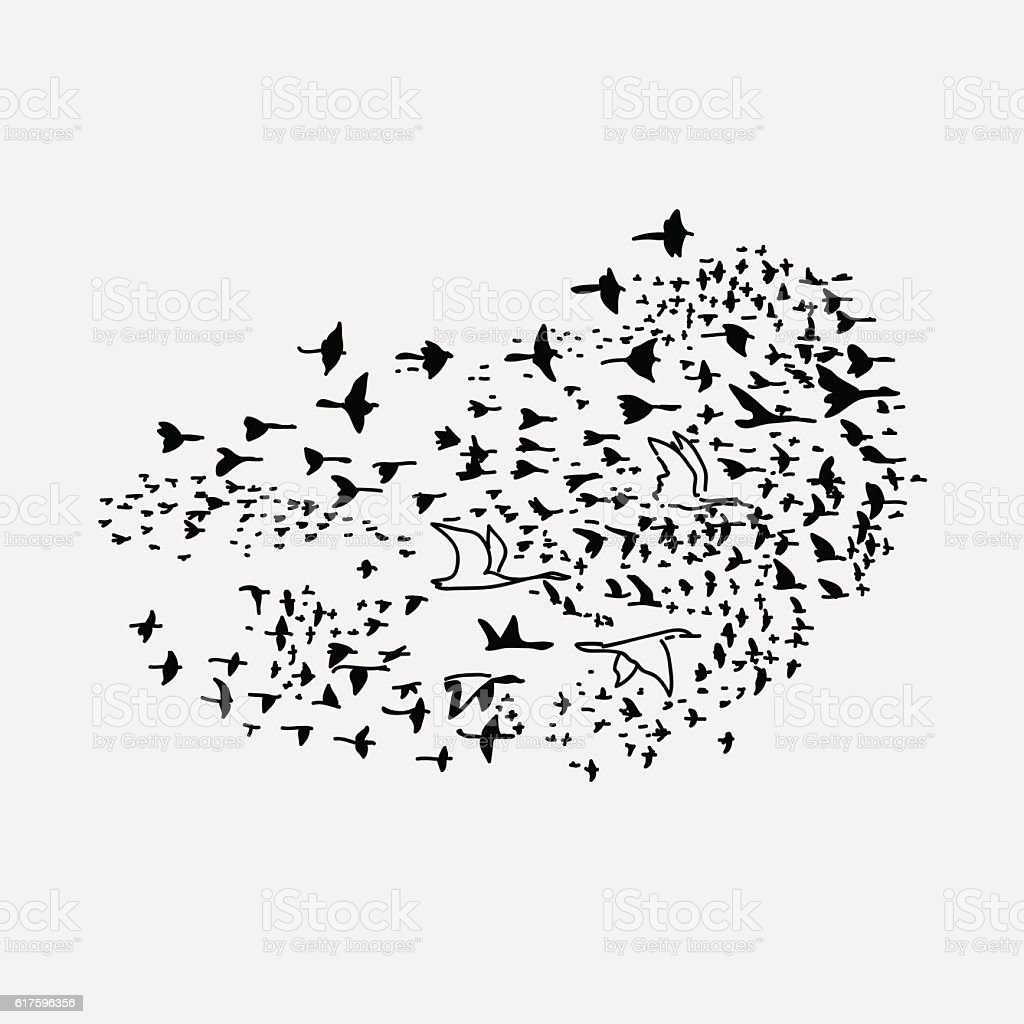 flock of birds different sizes that fly to south vector art illustration