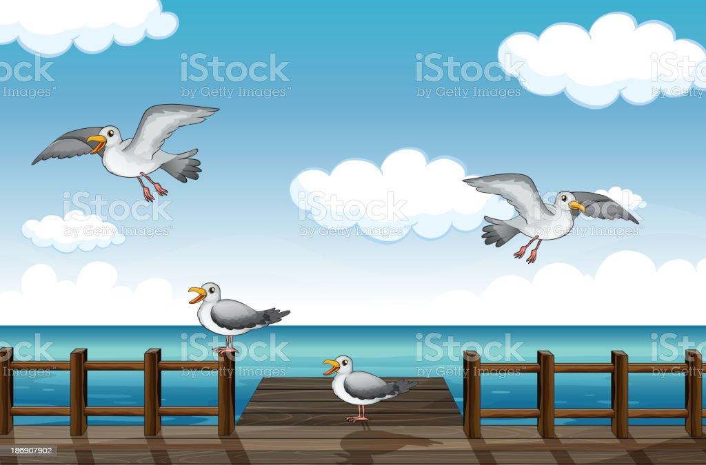 flock of birds looking for foods royalty-free stock vector art