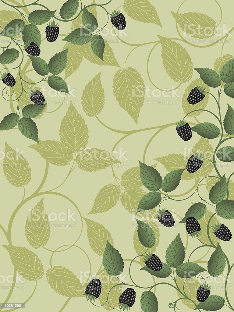 Floral background with a blackberry royalty-free stock vector art