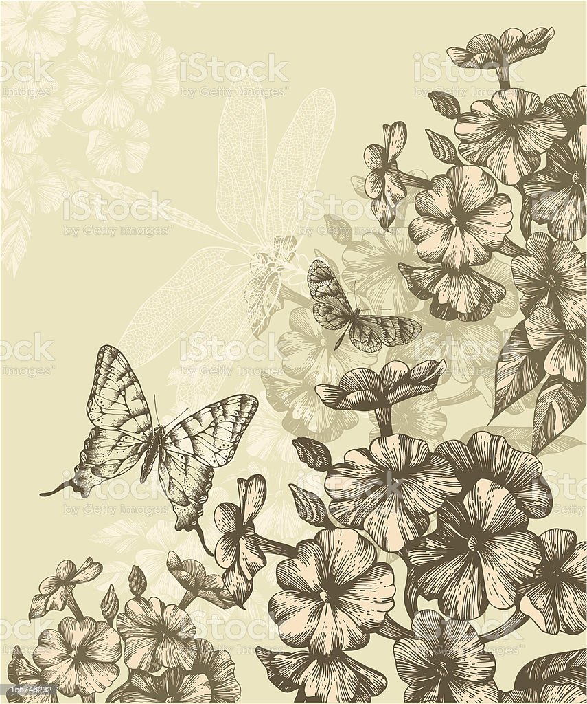 Floral background with blooming phlox and flying butterflies, hand-drawing. Vector. royalty-free stock vector art