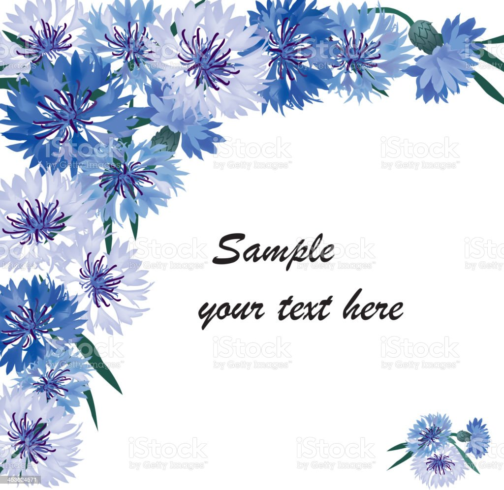 Floral background with cornflower border royalty-free stock vector art