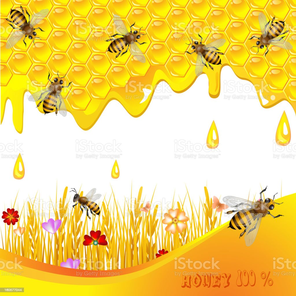 Floral background with honey royalty-free stock vector art