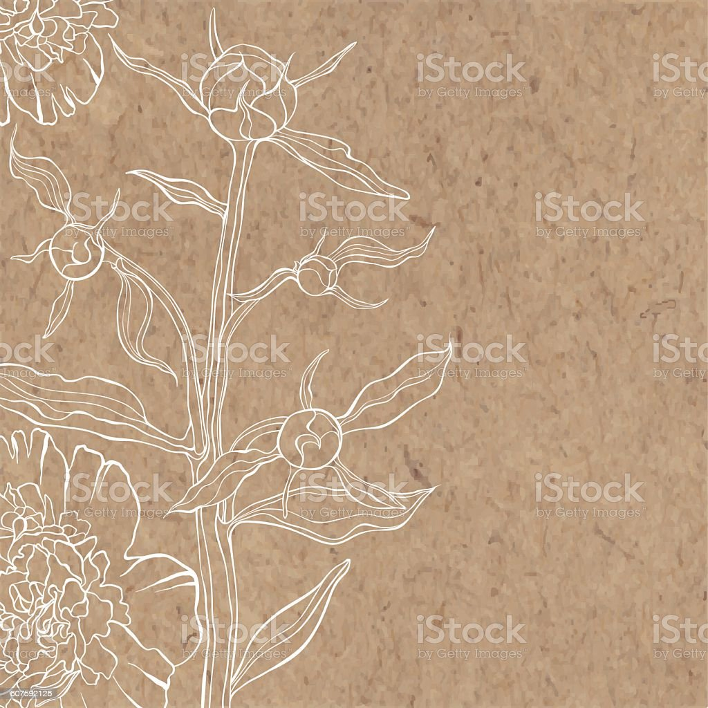 Floral background with peony on kraft paper. vector art illustration